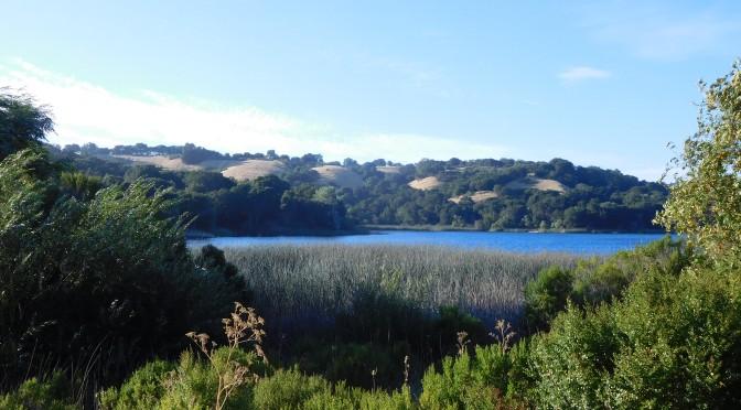Hike au Lafayette Reservoir