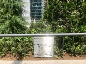 Le Redwood Canopy qui présente un exemple d'éco-système